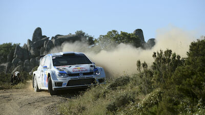 WRC+ Focus: The new kid on the block