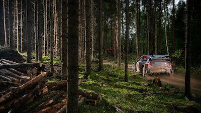 Estonia prize exhibit is museum speedfest